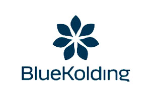 Scanview Sikring - Blue Kolding