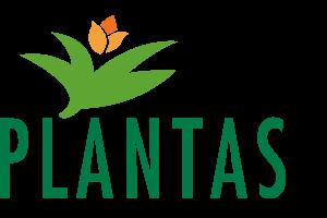 Scanview Sikring - Plantas